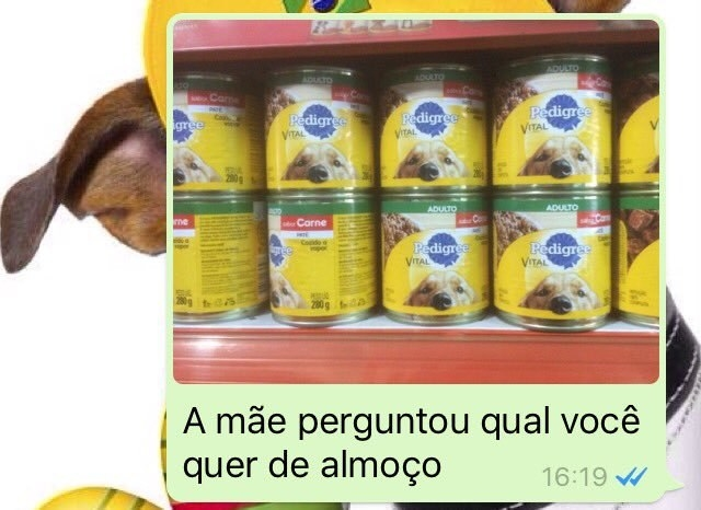almoco-irmaos-whatsapp