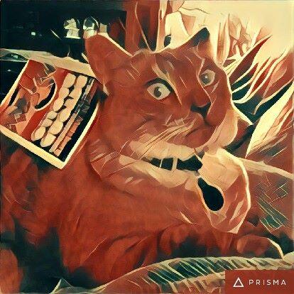 app prisma