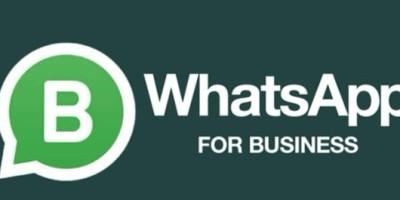 Conheça a ferramenta que poderá alavancar sua empresa: WhatsApp For Business
